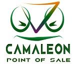 camaleon point of sale